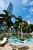 High rise buildings, hotels, swimming pool and palm trees in downtown, Miami, Florida, USA