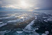 Ice on west coast, Greenland, Denmark