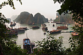 Alex, Adams, nobody, Outdoors, Day, Nature, Transportation, Physical Geography, Landscape, Geology, Peak, Mountain, Tree, Idyllic, Tranquility, Scenics, Beauty In Nature, Sea, Rowing Boat, Barge, Tourism, Travel Destinations, Halong Bay, Vietnam, Bay, Nob