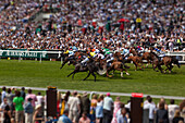 Doug, McKinlay, Outdoors, Day, Differential Focus, Running, Large Group Of People, Medium Group Of Animals, Animal Themes, Working Animals, Gambling, Motion, Sports Track, Place Of Interest, Local Landmark, Capital Cities, Rivalry, London, England, UK, Ep