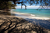 Hawaii, Maui, Olowalu, Gray sand beach with shadows of tree branches.