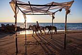 Horse vendor ends his day at beach where destination wedding was held, Puerto Vallarta, Mexico