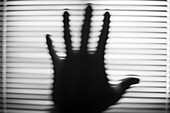Blurred Hand Against Blinds, Abstract