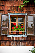 Window with geraniums of a wooden house, Styria, Austria