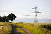 Felder mit Strommasten, Hartberg, Steiermark, Österreich