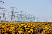 Landscape with electrical pylons and wind turbines, England, Great Britain