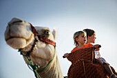 Two children riding a dromedary, Agadir, Morocco