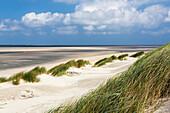 Dunes on the beach, Langeoog Island, North Sea, East Frisian Islands, National Park, Unesco World Heritage Site, East Frisia, Lower Saxony, Germany, Europe