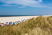 Beach chairs on the beach, Juist Island, North Sea, East Frisian Islands, East Frisia, Lower Saxony, Germany, Europe