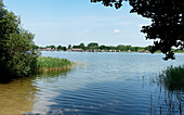Inselsee, Guestrow, Mecklenburg-Western Pomerania, Germany