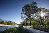 Jogger running along river Isar in the morning, Flaucher, Munich, Bavaria, Germany