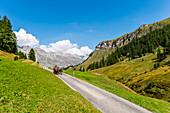 Horse-drawn carriage in Val Flex, Sils-Maria, Upper Engadin, Canton of Graubuenden, Switzerland