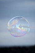 Big soap bubble in the air.
