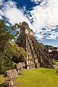 tikal maya ruins.temple number 1 or gran jaguar. guatemala