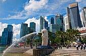 Singapore downtown famous Lion symbol Merlion and skyline of city in Fullerton Area of Clarke Quay area