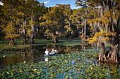 People in a Canoe, Cypress Swamp, Caddo Lake, Texas and Louisiana, USA