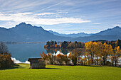 View over Forggensee lake to the Allgaeu Alps, Saeuling and Tannheim mountains, Allgaeu, Bavaria, Germany
