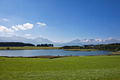 View over lake Forggensee to the Allgaeu Alps with Tegelberg, Saeuling and Tannheim mountains, Allgaeu, Bavaria, Germany