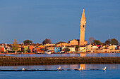 Venetian Lagoon with the Island of Burano and leaning tower, Fishing village with colourful house facades, Veneto, Italy