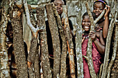 Children of the Zulu tribe looking through a cattle fence, KwaZulu-Natal, South Africa, Africa