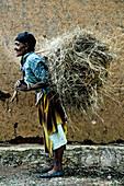 Old woman from the Dorze tribe carrying a bundle of hay, South Ethiopia, Africa