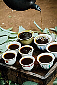 Freshly brewed coffee being poured into cups from a pot, Ethiopia, Africa