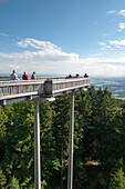 Tree top walk over a spruce forest, Maibrunn, Bavarian Forest, Bavaria, Germany