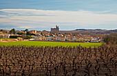 Blick über Weinanbaugebiet auf Capestang, Canal du Midi, Dept. Hérault, Languedoc-Roussillon, Frankreich, Europa