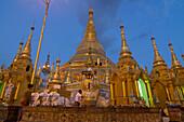 Burmese man praying after sunset at the Shwedagon Paya, Yangon, Rangoon, Myanmar, Burma