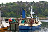 Fishing boats in the port of Edsvik near Grebbestad, Province of Bohuslaen, West coast, Sweden, Europe
