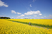 Woman riding an electric bicycle between blooming canola fields, Tanna, Thuringia, Germany