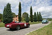 OSCA, MT4 TN 1500, 1955, Mille Miglia, 1000 Miglia, near San Quirico d'Orcia, Toskana, Italy, Europe