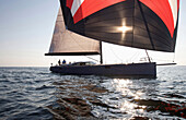 A crew races a modern ocean-going sailing yacht under spinnaker Boothbay Harbor, Maine, USA