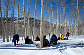 Five men sitting in the snow and aspen trees eating lunch while on a backcountry ski trip Wendover, Nevada, USA