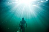 Female enjoys diving underwater in Idaho Sandpoint, Idaho, USA