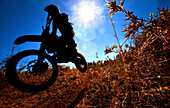 A motorcyclist rides through the brush in an Enduro race in Maplesville, Alabama. (Back lit, Lens Flare, Motion Blur), Maplesville, Alabama, United States