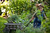 Two-year-old boy pulls wagon through garden Beverly, MA, USA
