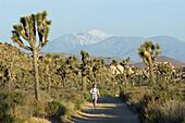 Trail runner on dirt road Joshua Tree National Park, California, United States