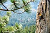 Attractive woman rock climbing high above a valley floor South Lake Tahoe, California, United States