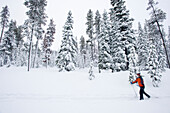 One young woman cross country ski's on a trail in the snow in Bend, Oregon (blurred motion) Bend, Oregon, U.S.A.
