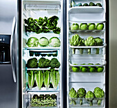 Green vegetables in refrigerator, Los Angeles, California, United States