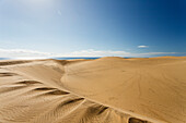 Dunes of Maspalomas, Dunas de Maspalomas, natural reserve, Maspalomas, municipality of San Bartolomé de Tirajana, Gran Canaria, Canary Islands, Spain, Europe