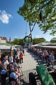 May 1st, Putting up the maypole, Viktualienmarkt, Munich, Upper Bavaria, Bavaria, Germany