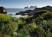 Archway Islands, Wharariki Beach, Tasman, South Island, New Zealand