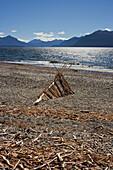 Lake Te Anau with driftwood, Southland, South Island, New Zealand