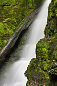 Lower McLean Falls, Catlins, Southland, South Island, New Zealand