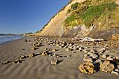 Sandy beach, Otago, South Island, New Zealand