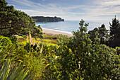 Hot Water Beach, Coromadel Peninsula, Waikato, North Island, New Zealand