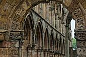 Ruine von Jedburgh Abbey, Jedburgh, Scottish Borders, Schottland, Großbritannien