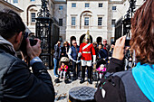 Guard at Horse Guards Parade, Whitehall, Westminster, London, England, United Kingdom